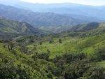 ecuador cloud forest adventure blick wald klein
