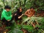 ecuador eco volunteer dschungel klein