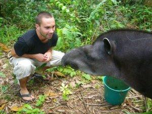 ecuador eco volunteer tierwelt