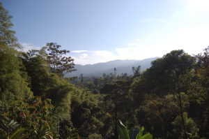 ecuador un poco del choco landschaft