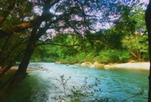 panama-ecofarms-mamoni-river-volunteer