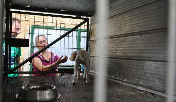 Christian und Lidia in der Auffangstation.
