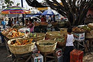 In ihrer Freizeit konnte Lea oft die einheimischen Märkte besuchen. Wie man sieht, kommt hier jeder Obst-Fan auf seine Kosten.