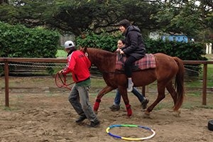 Freiwilligenarbeit  Peru - Reittherapie mit Autisten