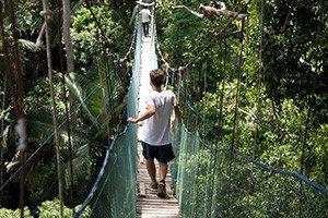 Peru: Regenwald-Projekt