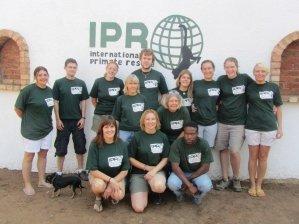 suedafrika-rettungsstation-affen-gruppe