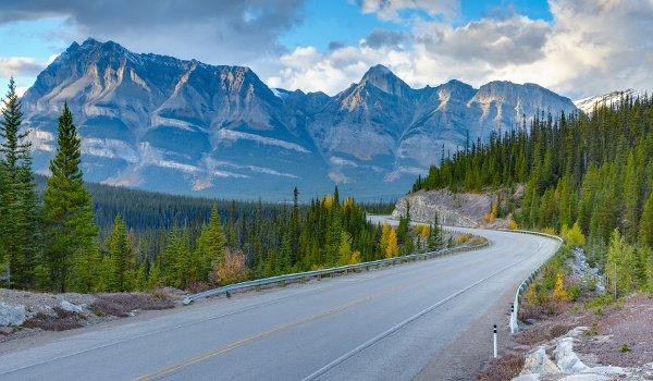 Der Icefields-Parkway gilt als eine der schönsten Panoramastraßen der Welt.